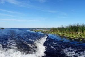 excursii-delta-dunarii-galerie-4